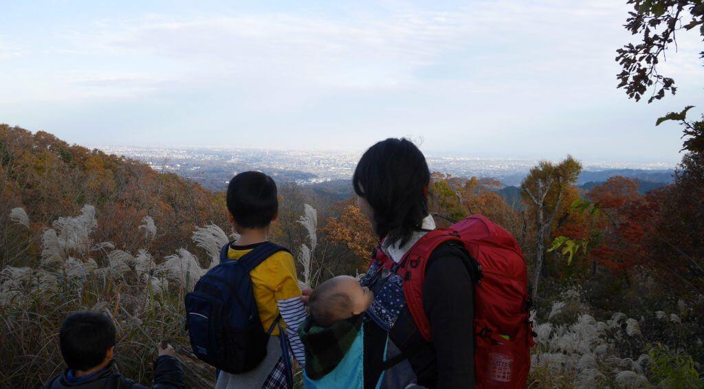 高尾山登山赤ちゃん連れベビーカー抱っこ紐